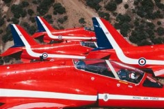 red 20
